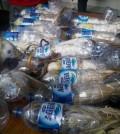 Burung kakaktua jambul kuning diselundupkan dalam botol plastik air minum diamankan petugas dari Polres Pelabuhan Tanjung Perak Surabaya. Foto : Petrus Riski
