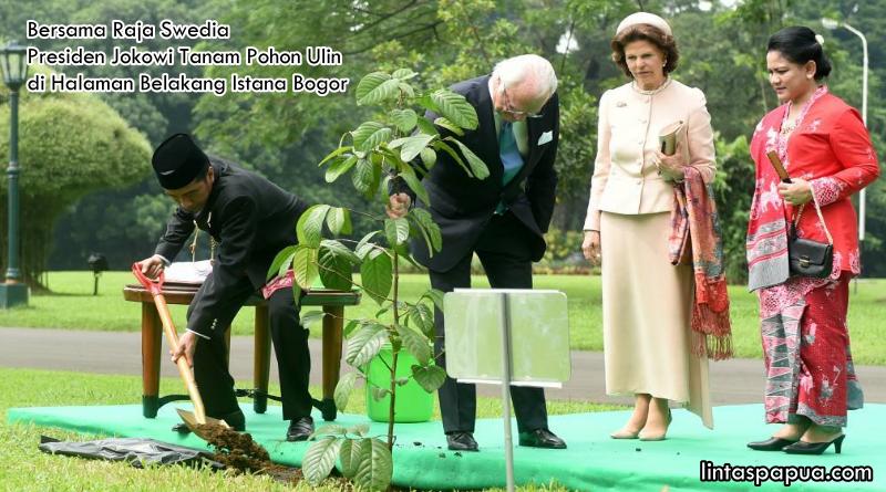 Presiden Joko Widodo dan Raja Swedia Carl XVI Gustaf Tanam Pohon