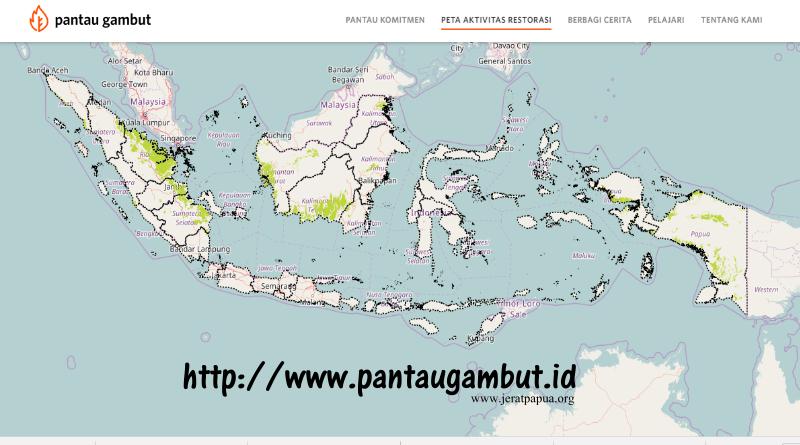 Ini Penjelasan Tentang Gambut di Papua