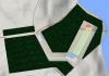 Miniatur Lokasi Bandara Antariksa yang di Rencanakan LAPAN akan di Bangun di Biak . Ist .